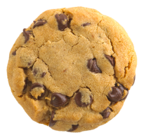 a single chocolate chip cookie